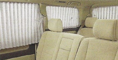 Curtain in vehicle car